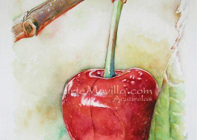 M. Angeles Movilla - Cereza Roja (I) Acuarela 76x57cm