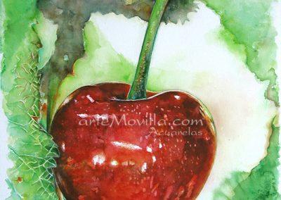 M. Angeles Movilla - Cereza Roja (II) Acuarela 76x57cm