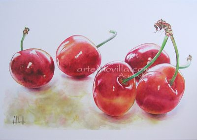 M. Angeles Movilla - 5 Cerezas Acuarela 60x95cm